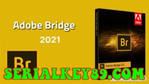 Adobe Bridge CC 2021 v11.0.2.12355
