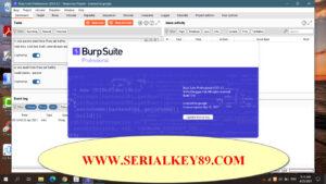 Burp Suite Professional 2021.4.2 Build 7263