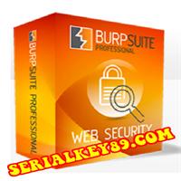 Burp Suite Professional 2021.4.2