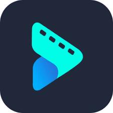 Vidmore Video Converter 1.2